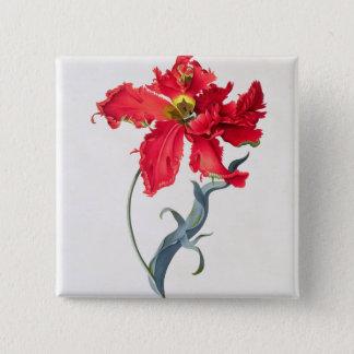 Tulip: Perroquet Rouge 15 Cm Square Badge