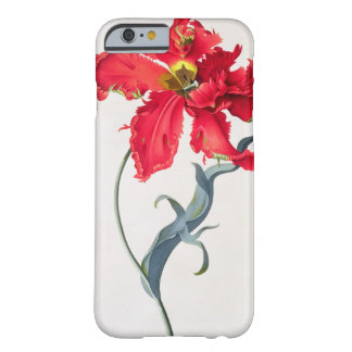 Tulip: Perroquet Rouge Barely There iPhone 6 Case