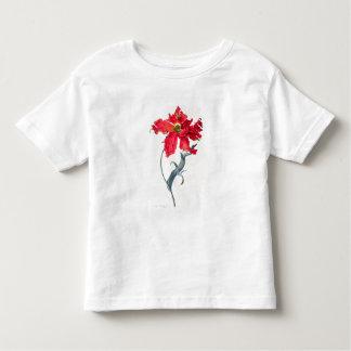 Tulip: Perroquet Rouge Toddler T-Shirt