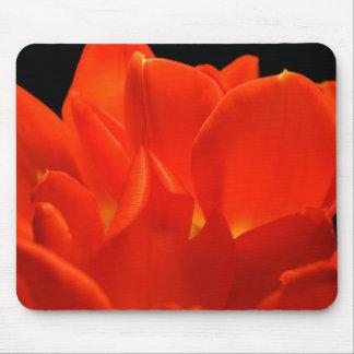 Tulip Petals Mousepads