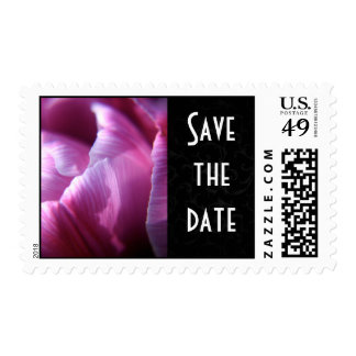 Tulip petals Save the date postage