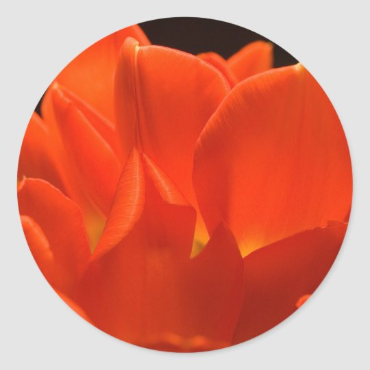 Tulip Petals Stickers