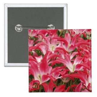 Tulip Photos Square Pin