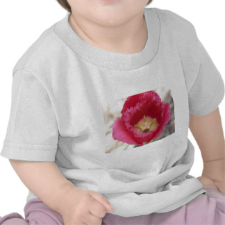 tulip pink fringe tulip tee shirt