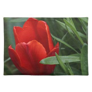 Tulip Place Mat