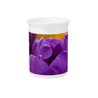 Tulip Purple Pitcher