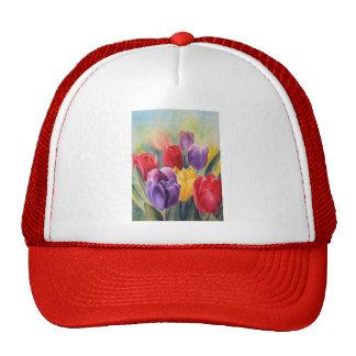 Tulip rainbow cap