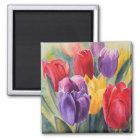 Tulip rainbow magnet