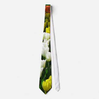 Tulip Rainbow Wave Tie