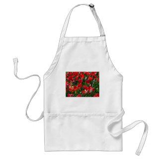 tulip,red tulips standard apron