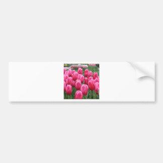 Tulip RSVP Bumper Sticker