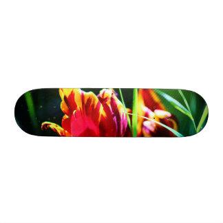 Tulip Skateboards
