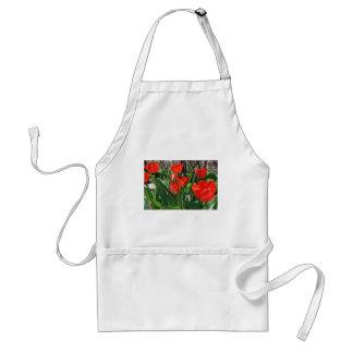 Tulip Summer Standard Apron