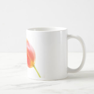 Tulip to water drops basic white mug