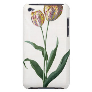 Tulip Tulip Barely There iPod Cases