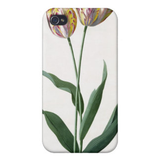 Tulip Tulip Case For The iPhone 4