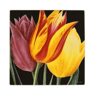 Tulip (Tulipa Gesneriana) Wood Coaster