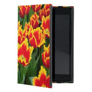 Tulipa Fabio, Keukenhof, Netherlands iPad Mini Case