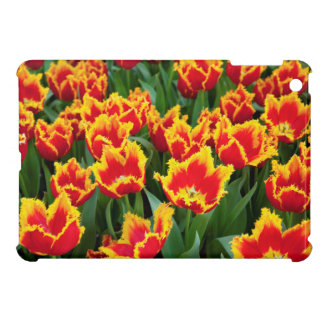 Tulipa Fabio, Keukenhof, Netherlands iPad Mini Covers