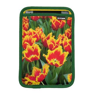 Tulipa Fabio, Keukenhof, Netherlands iPad Mini Sleeve