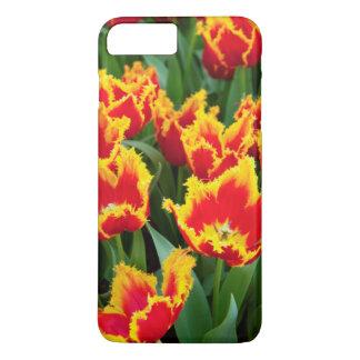 Tulipa Fabio, Keukenhof, Netherlands iPhone 8 Plus/7 Plus Case