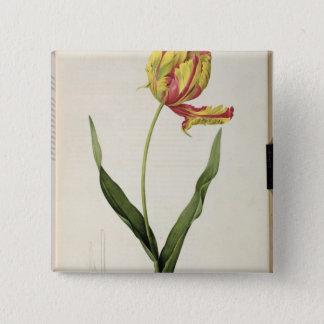 Tulipa gesneriana dracontia, from 'Les 15 Cm Square Badge
