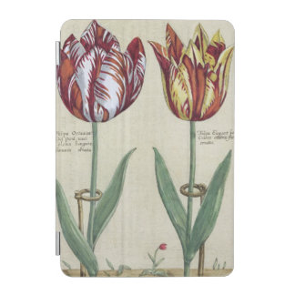Tulipa Octaviani del pont, and Tulipa Elegant, fro iPad Mini Cover