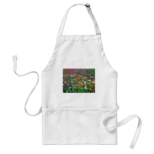 Tulips #1 aprons
