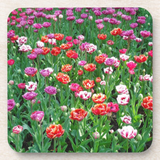 Tulips #1 drink coasters