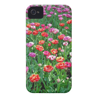Tulips #1 iPhone 4 cover