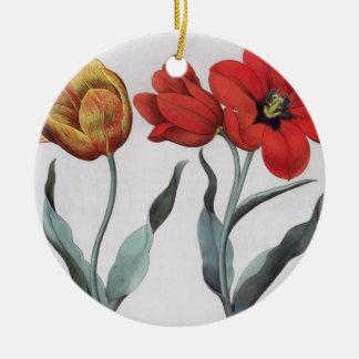 Tulips: 1.Tulipa globosa serotina cinnabrio colore Christmas Ornament