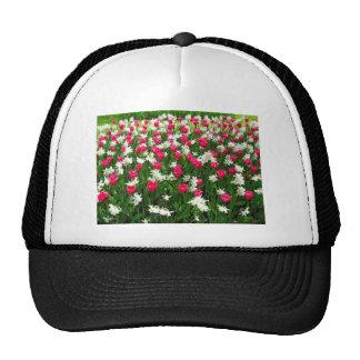 Tulips.#2 Trucker Hats