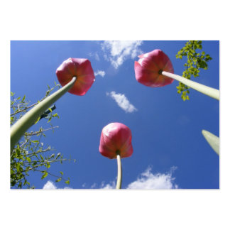 """Tulips 3 """"Worms eye view"""" ~ ATC card Pack Of Chubby Business Cards"""