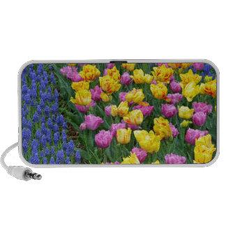 Tulips and bluebells flower garden portable speaker