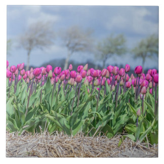 Tulips and blurred sky ceramic photo tile