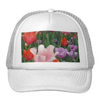 Tulips and Pansies 2 Cap