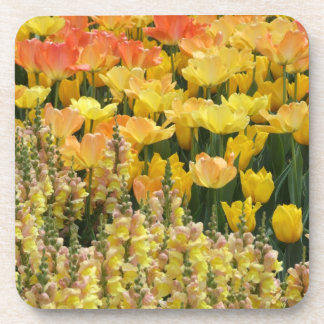 Tulips and Snapdragons Coasters