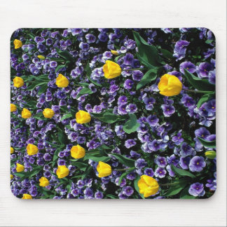 Tulips and violas mouse pad