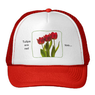 """""""Tulips are red too..."""" - Photograph of Three Red Cap"""