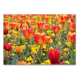 Tulips, Bright and colorful yellow and red Table Card