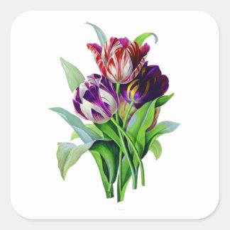 Tulips by Pierre Joseph Redoute Square Sticker