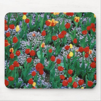 tulips  by TDGallery Mouse Mat