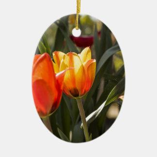 Tulips Ceramic Oval Decoration