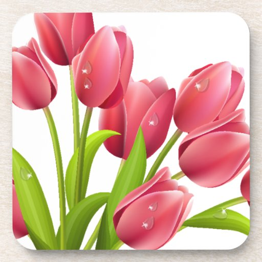 Tulips Drink Coasters
