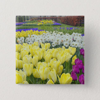 Tulips, daffodils, and Grape Hyacinth flowers, 15 Cm Square Badge
