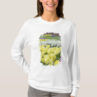 Tulips, daffodils, and Grape Hyacinth flowers, T-Shirt