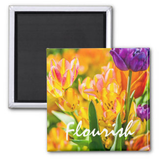 Tulips Enchanting 01 Square Magnet