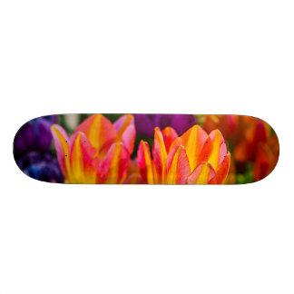 Tulips Enchanting 16 20 Cm Skateboard Deck