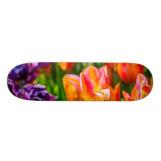 Tulips Enchanting 17 21.6 Cm Skateboard Deck