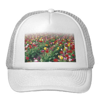 Tulips Faded Top Hat